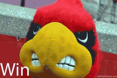 Louisville-Cardinal-Bird-UofLCardGame-455x304