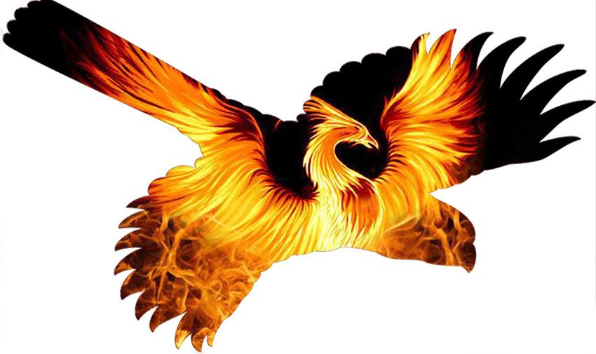 Cardinal-blaze